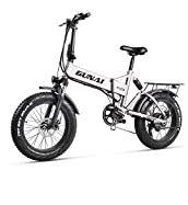 Vélo électrique Fat Bike 500W-48V