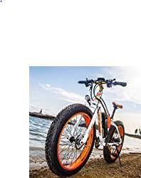 vélo électrique Smart e-Bike 48V.